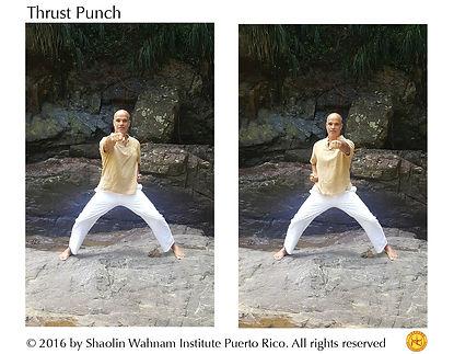 Thrust Punch web.jpg