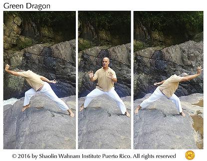 Green Dragon web.jpg