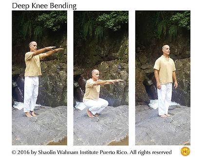 Deep knee bending web.jpg