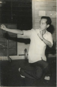 Sigung Ho Fatt Nam demonstrating a Northern Shaolin pattern.