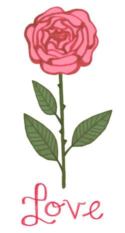 Rose rouge 3_edited