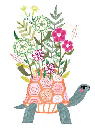 LL_Turtle