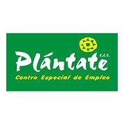 PLÁNTATE_CENTRO_ESPECIAL_DE_EMPLEO_Creat