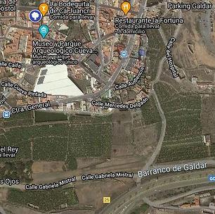 Drago_del_Ayuntamiento_viejo_de_Gáldar.