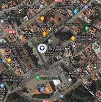 Araucaria de la Plaza de Teror.jpg