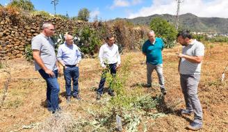 Valsequillo planta 4.400 árboles y reforesta 13 hectáreas de suelo baldío