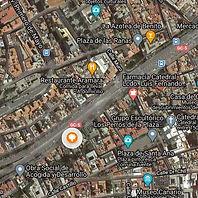 Araucaria de El Toril.jpg