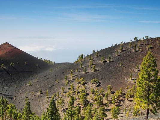 La Palma expone su oferta de Turismo Activo y Ecoturismo en el ciclo de Activa Canarias