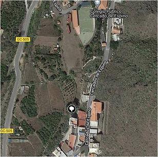 Acebuche de Cercados de Espino.jpg
