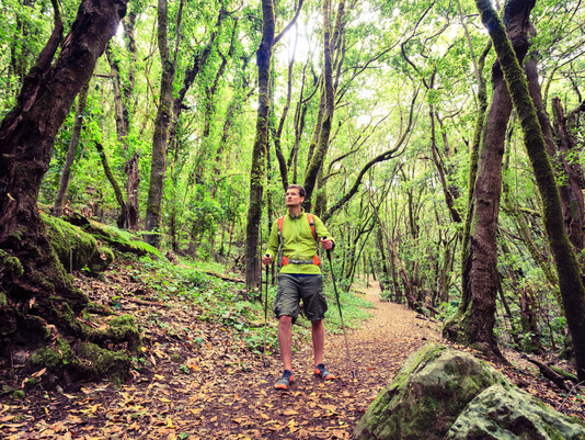 Activa Canarias pide al Gobierno autonómico mantener contratos de Turismo Activo