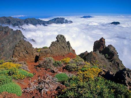 La Reserva de la Biosfera de La Palma avanza en el proyecto para aumentar el atractivo turístico de