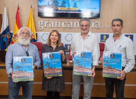 El Cabildo cataloga 85 árboles de Gran Canaria como singulares por su porte, belleza o su antigüedad