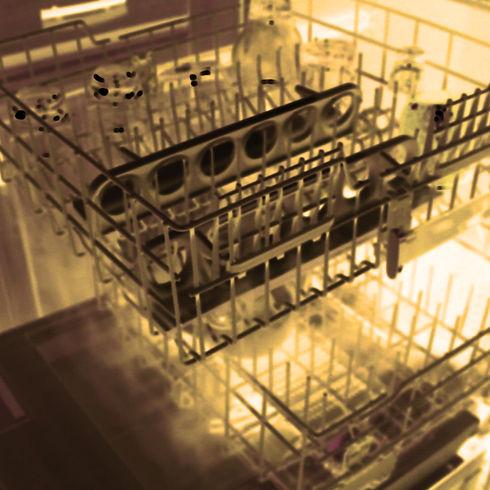 dishwasher load SQ.jpg