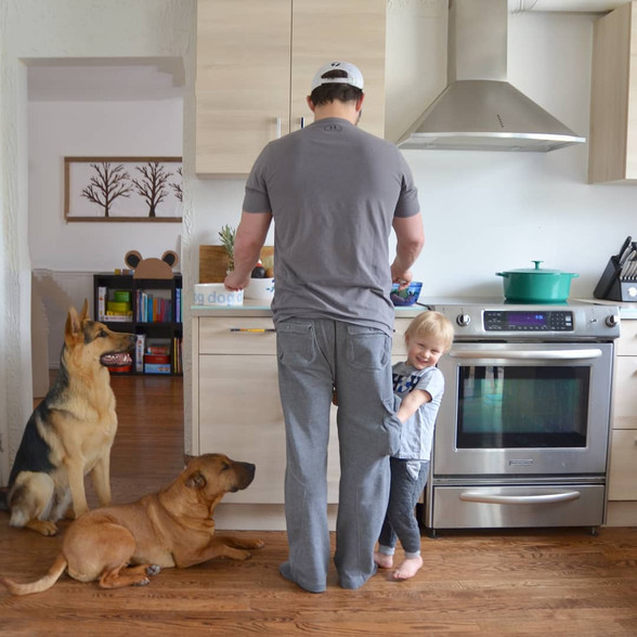 The Raw Food Diet & Why Your Dog/Cat Should Try It