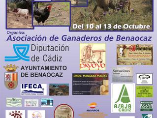 """AMEGRA presentará su """"Catálogo de Sementales"""" y celebrará su """"IX Concurso Nacional Mo"""