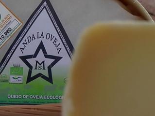 """Quesos """"Anda La Oveja"""" y la raza Merina de Grazalema, protagonistas en """"Cómetelo"""" de Canal Sur"""