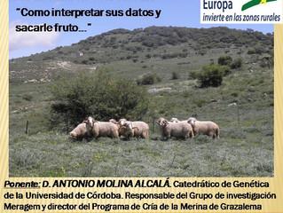 JORNADAS TÉCNICAS de AMEGRA para GANADEROS EL PRÓXIMO 12 DE DICIEMBRE