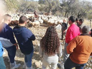 Dos socios de AMEGRA recibieron la visita de los alumnos de la ESCUELA DE PASTORES DE ANDALUCIA