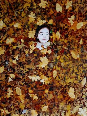 Ten Thousand Leaves III (2015)