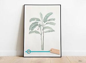 Digital-Downloads-Botanical-Tropical.jpg