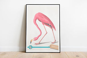 Vintage-Flamingo-Download-from-Graphicit