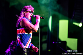 Joe Elliott - The Rock Gods