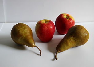 apples and pears reference image