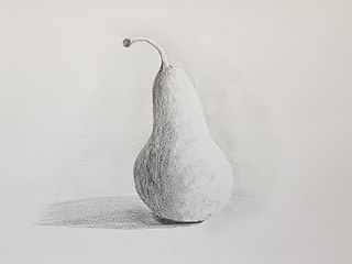 pencil pear drawing sample by Charlotte