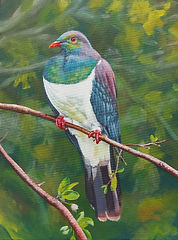 Kereru Wood pigeon acrylic painting workshop charlotte Giblin sample