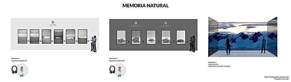 MEMORIA NATURAL