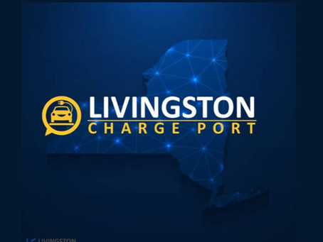 2020 A Year in Review: Livingston Energy Group Charges Forward