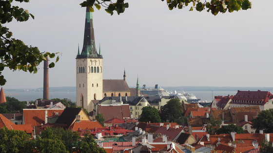 Tallinn Walking Tour