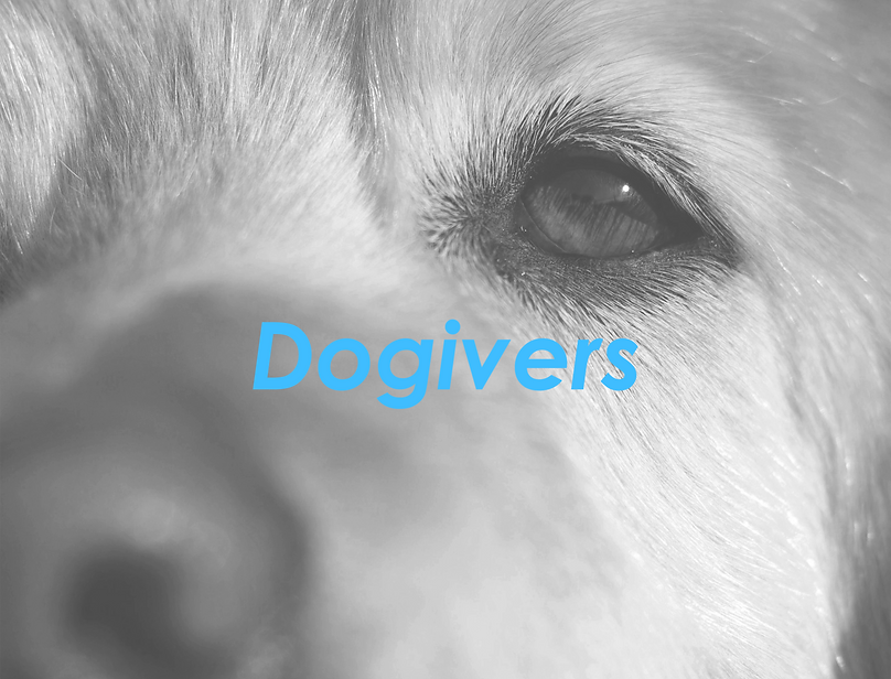 dogivers3.png