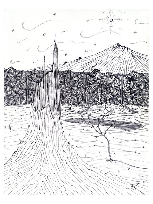 Black and White Landscape II