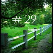 29 Fence.jpg