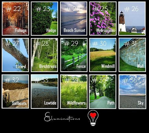 Outdoor Multi Background Layout.jpg