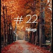 22 Foliage.jpg