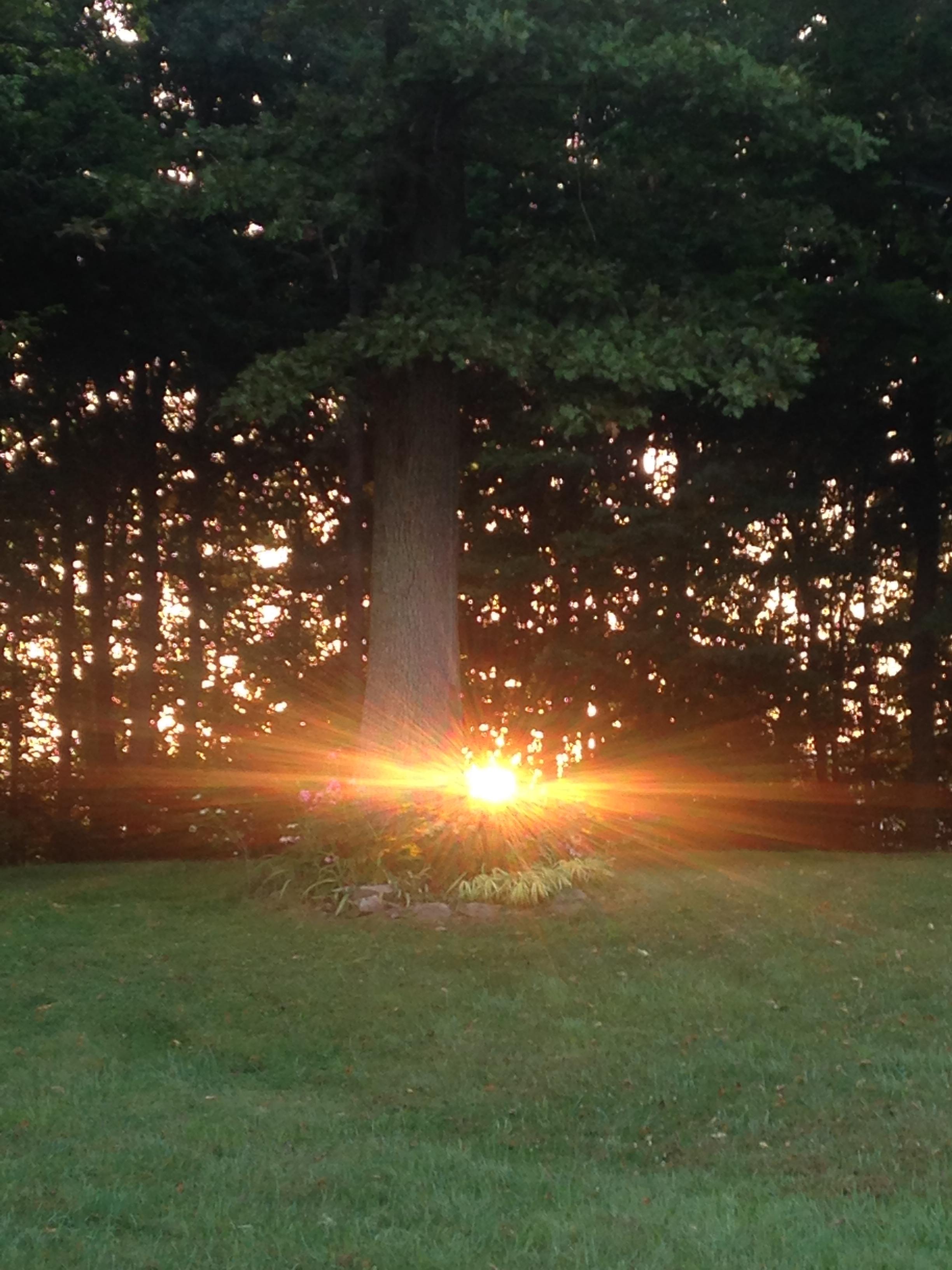 Sunrise at daybreak