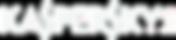 Kaspersky_Lab_logo WHITE.png
