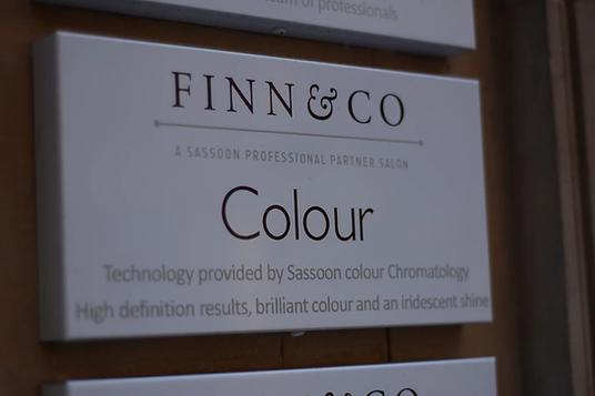 FINN & CO 11.webp