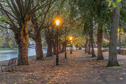 embankment in autumn.webp