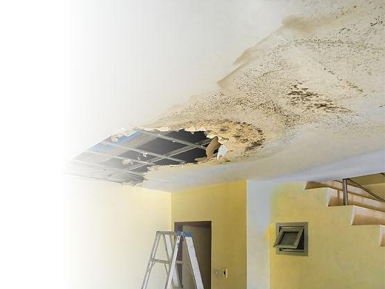 ceiling leak.jpg