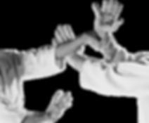 Ju jitsu technique