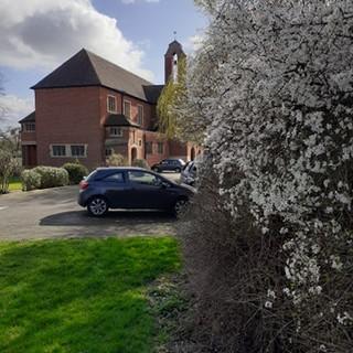 Transfiguration Church in bloom
