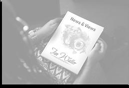 blog book.png