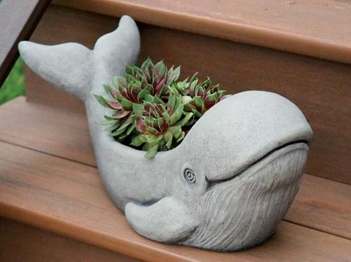 Kilo the Whale Planter