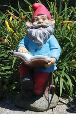 Lazy Daze Gnome - Book