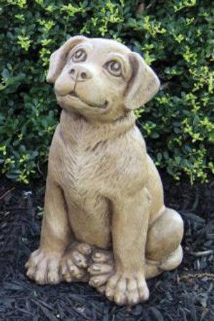 """13"""" Puppy - Labrador Retriever"""