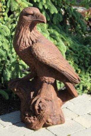"""33"""" Eagle"""