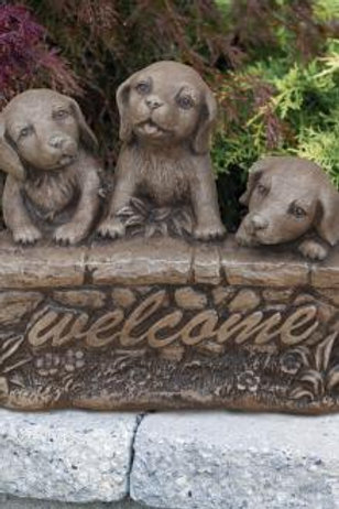 Three Welcome Puppies